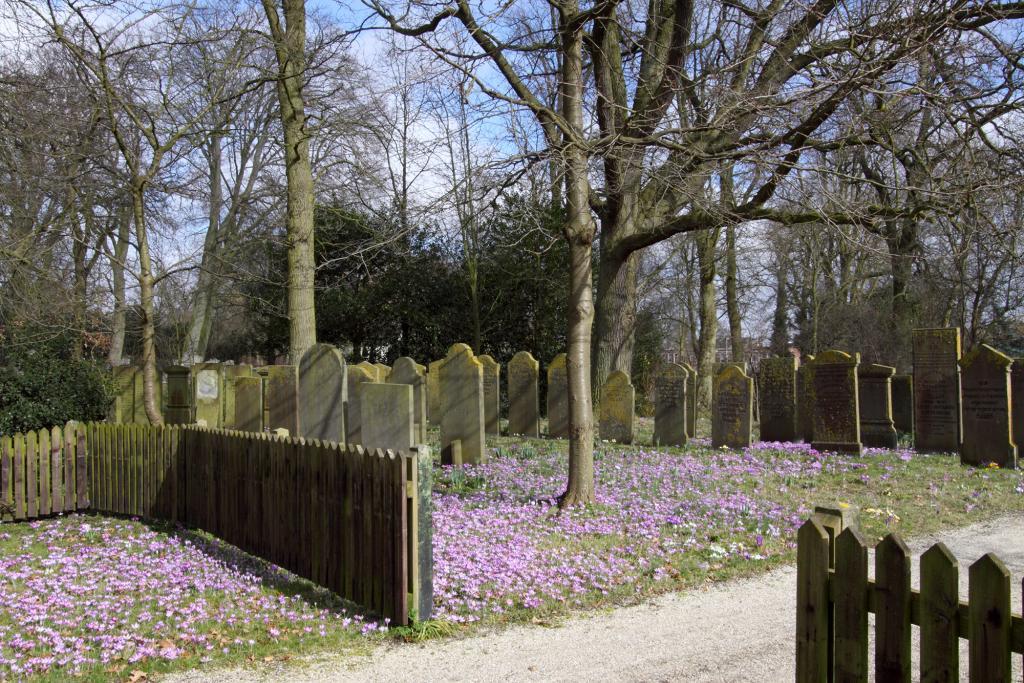 Informatie Begraafplaatsen Haarlem